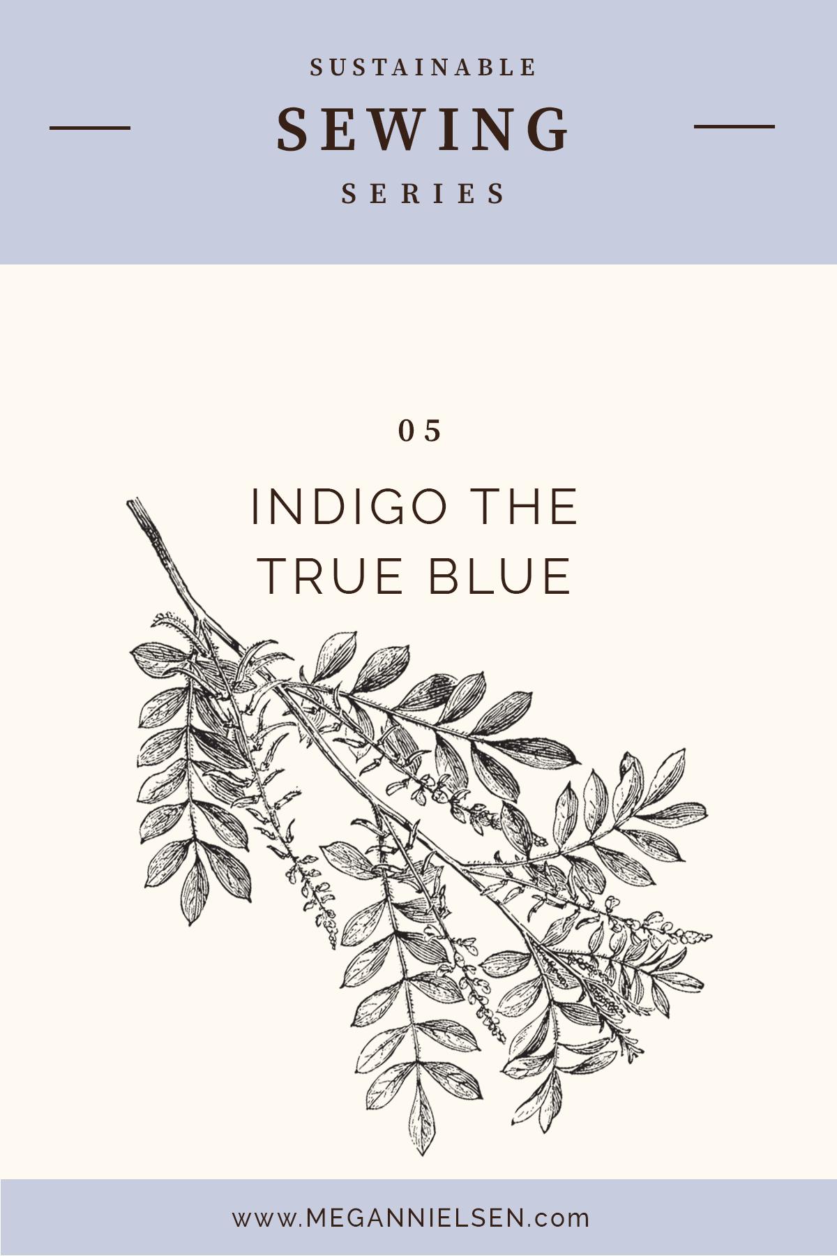 INDIGO THE TRUE BLUE