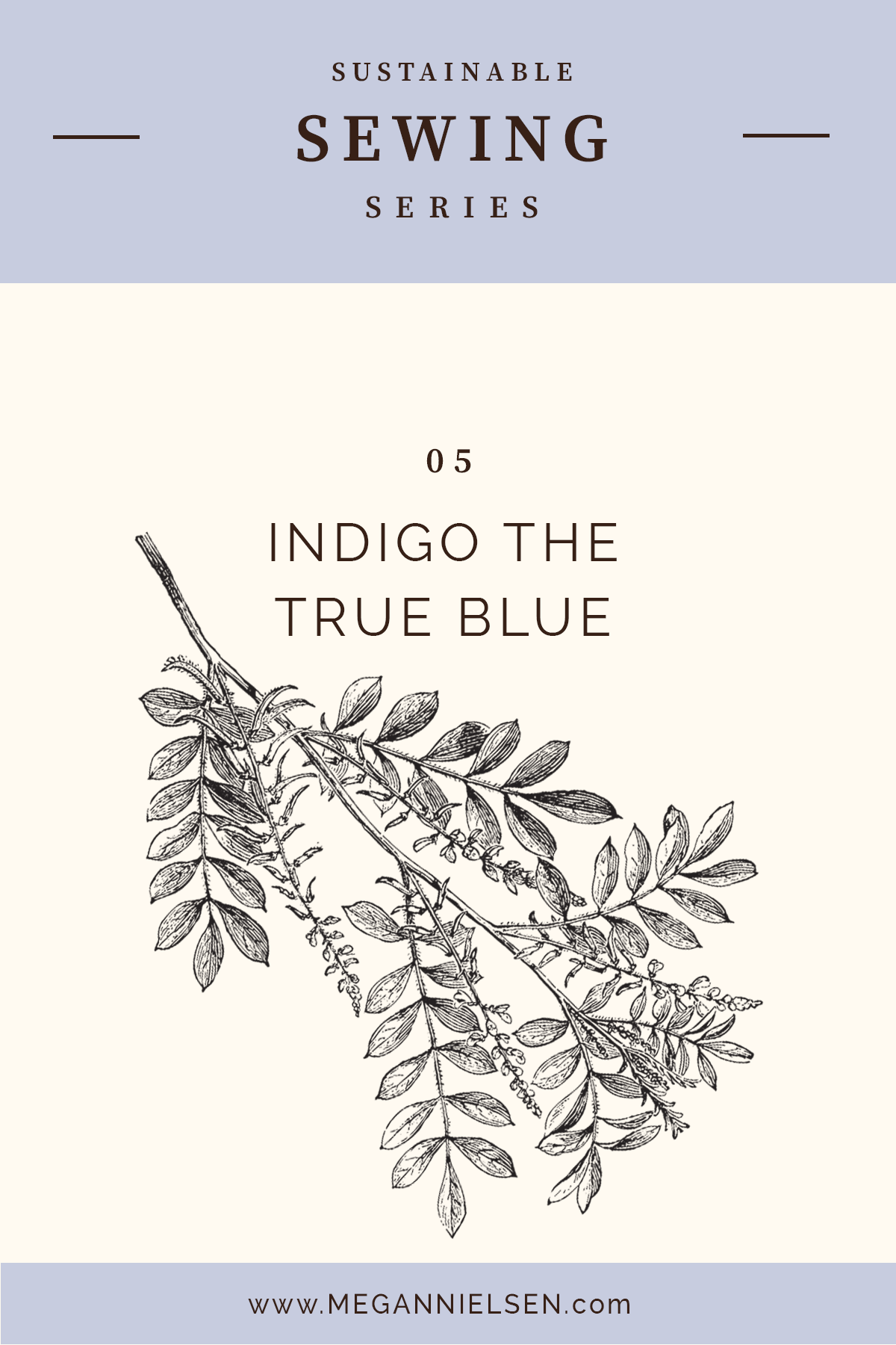 INDIGO THE TRUE BLUE