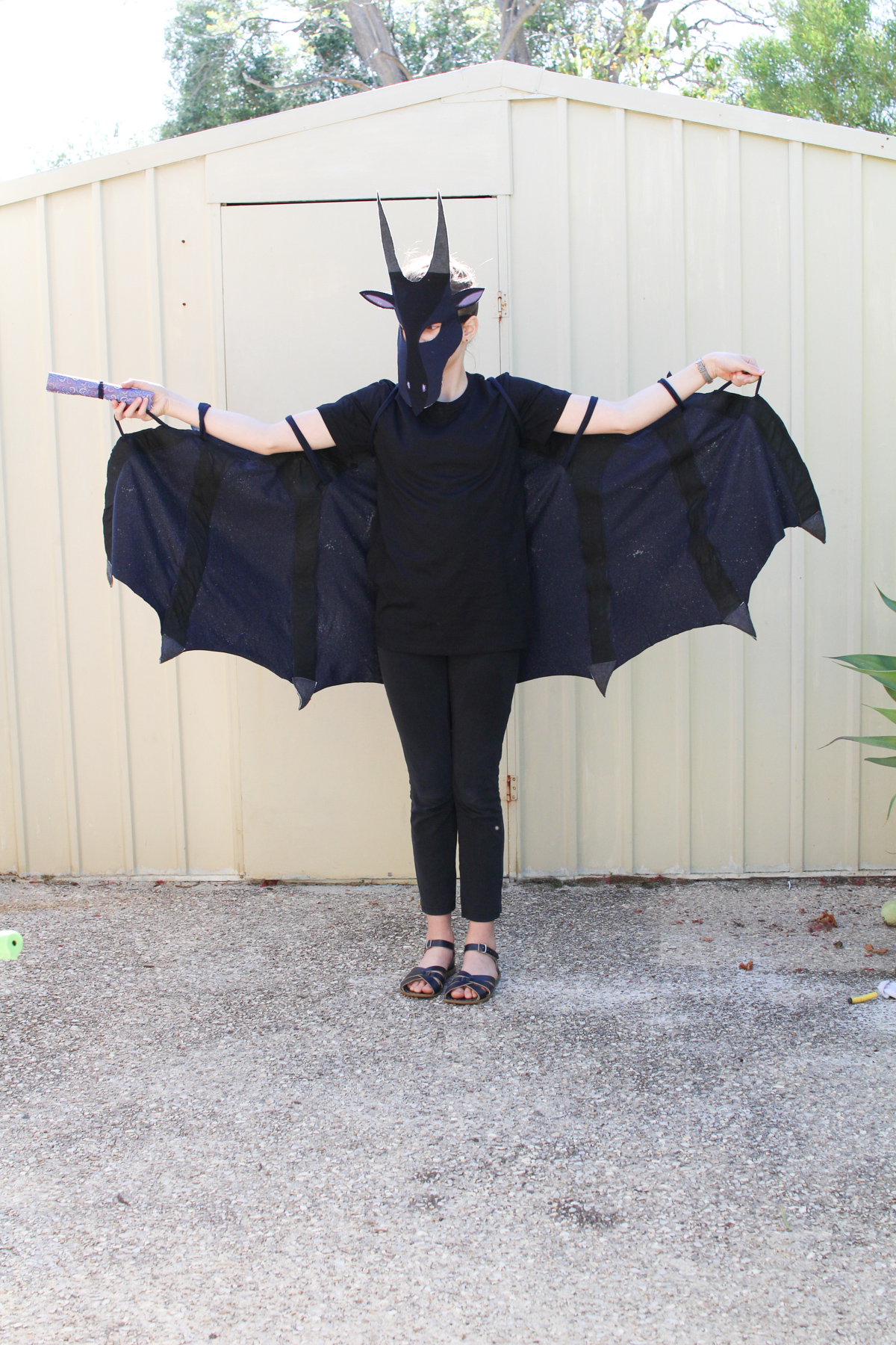 Wings of Fire costume